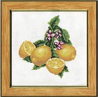 ФС-001 Лимончики