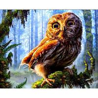 Картина по номерам Babylon Мудрая сова DZ967 50*40. На холст с подрамником.