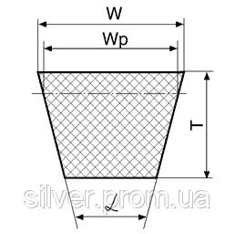 Ремни приводные клиновые узких сечений SPZ, SPA, SPB, SPC