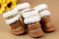 Зимняя обувь для собак