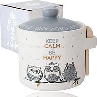 """Банка """"Gray owl"""" 420мл для сыпучих продуктов или меда с деревянной ложкой"""
