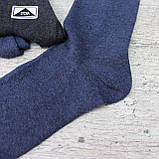 """Мужские качественные носки """"Житомир"""",42-45 р-р.. Носки мужские, фото 3"""
