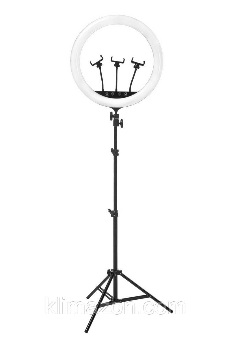 Кольцевая лампа Elexy 45