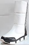 Сапоги женские дутыши зима от производителя КЛ226, фото 2