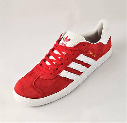 Кроссовки Adidas Gazelle Красные Мужские Адидас (размеры: 41,43,45) Видео Обзор, фото 3