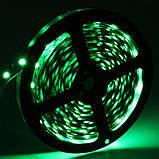 Стрічка зелена 14,4W/м в 60LED/м IP20 світлодіодна МТК-300G5050-12 №1, фото 2