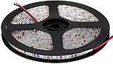 Стрічка червона 14,4W/м вологозихищена 60LED/м IP65 світлодіодна МТК-300RF5050-12 №1, фото 2