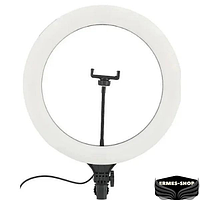 Кольцевая светодиодная LED лампа   40см   Без штатива