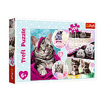 """Пазл """"Чарівні кошенята"""", 160 елементів Trefl (5900511153712)"""