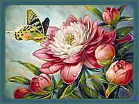 Частичная вышивка бисером Идейка Бабочка на пионе (ВБ1006) 30 х 40 см