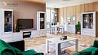 Витрина в гостиную Рома 2Дв ТМ Миро-Марк, фото 2