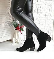Замшеві ботильйони взуття Vistani shoes, фото 1