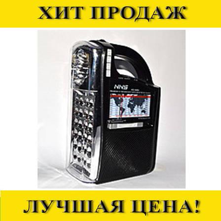 Sale! Радиоприемник NS-040U, фото 2