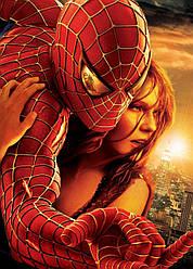 Картина GeekLand Spider-Man Человек-паук и Мери Джейн 40х60см SM.09.116