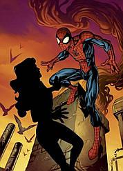 Картина GeekLand Spider-Man Человек-паук комикс 40х60см SM.09.031