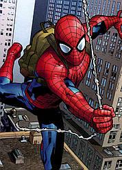Картина GeekLand Spider-Man Человек-паук комикс 40х60см SM.09.032
