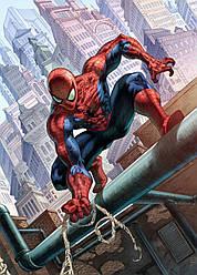 Картина GeekLand Spider-Man Человек-паук комикс 40х60см SM.09.037