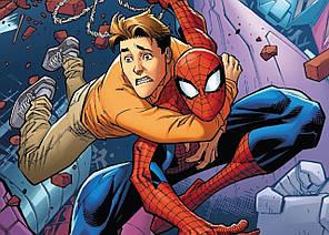 Картина GeekLand Spider-Man Человек-паук комикс 60х40см SM.09.041