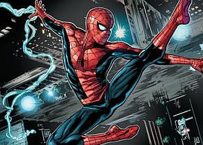 Картина GeekLand Spider-Man Человек-паук комикс 60х40см SM.09.049