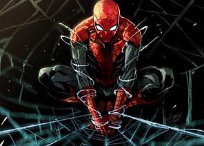 Картина GeekLand Spider-Man Человек-паук комиксная рисовка 60х40см SM.09.090