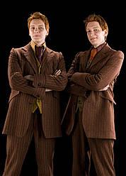 Картина GeekLand Harry Potter Гарри Поттер близнецы 40х60 HP 09.051