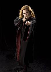 Картина GeekLand Harry Potter Гарри Поттер Гермиона 40х60 HP 09.049