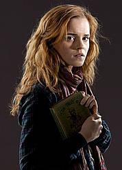 Картина GeekLand Harry Potter Гарри Поттер Гермиона 40х60 HP 09.050