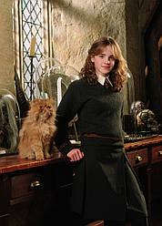 Картина GeekLand Harry Potter Гарри Поттер Гермиона 40х60 HP 09.068