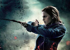 Картина GeekLand Harry Potter Гарри Поттер Гермиона 60х40 HP 09.014