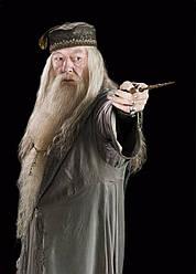 Картина GeekLand Harry Potter Гарри Поттер Дамблдор 40х60 HP 09.044