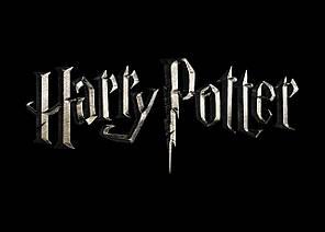 Картина GeekLand Harry Potter Гарри Поттер лого 60х40 HP 09.016