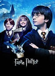 Картина GeekLand Harry Potter Гарри Поттер постер 40х60 HP 09.021