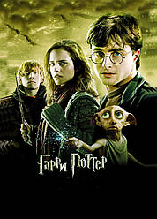 Картина GeekLand Harry Potter Гарри Поттер постер 40х60 HP 09.022