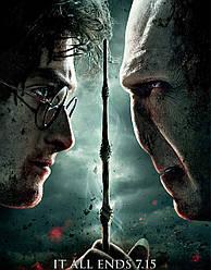 Картина GeekLand Harry Potter Гарри Поттер постер 40х60 HP 09.030
