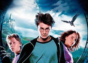 Картина GeekLand Harry Potter Гарри Поттер постер 60х40 HP 09.005