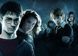 Картина GeekLand Harry Potter Гарри Поттер постер 60х40 HP 09.018