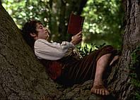 Картина GeekLand The Lord of the Rings Властелин колец фродо читает книгу 60х40см LR 09.149