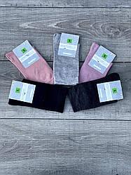 Высокие мягкие женские носки Montebello однотонные 36-40 12 шт в уп микс из 5-ти цветов