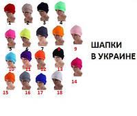 Шапка Унисекс 15 цветов РАСПРОДАЖА