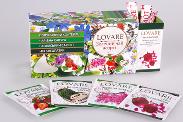 Чай в пакетиках Зеленый Ассорти LOVARE, 24 пак