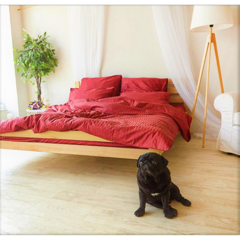 Постельное белье Страйп-сатин Красный (Турция) ТМ Царский дом  (Двуспальный)