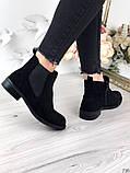 Женские демисезонные ботинки Челси на резинках, фото 2