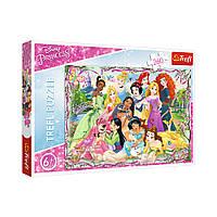 """Пазл """"Встреча Принцесс"""", 260 элементов Trefl Disney Princess (5900511132427)"""