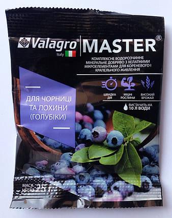 Удобрение для голубики и черники 25 г, Valagro, фото 2