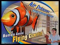 Летающие рыбы Air Swimmers Рыба-Клоун