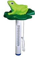 Термометр плавающий «Лягушка»