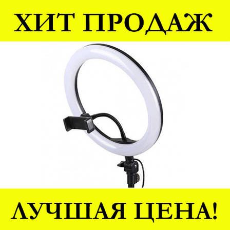 Кольцевая LED лампа 2 (1 крепл.тел.) USB (26см), фото 2