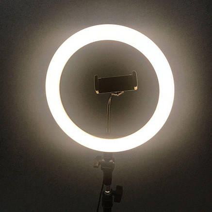 Кольцевая LED лампа JY-300 (30см), фото 2