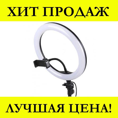 Кольцевая LED лампа JY-300 (30см)
