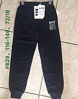 Спортивні штани з начосом для хлопчиків Taurus оптом, 116-146 рр. Артикул:F629